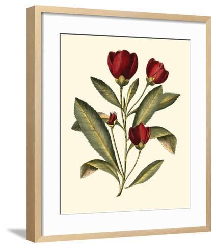 Jenna's Flowers IV-Sellier-Framed Art Print