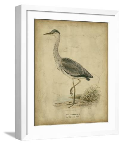 Vintage Heron II- Von Wright-Framed Art Print