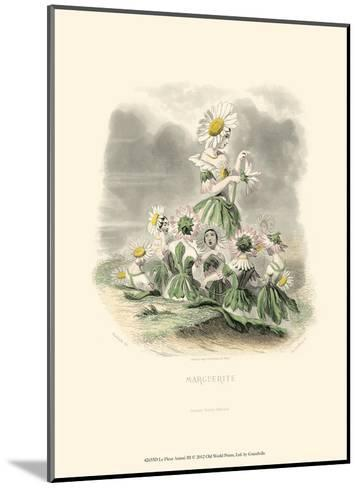 Le Fleur Animé III--Mounted Art Print