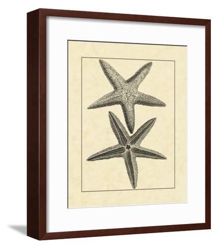 Antique&Deckle Vintage Starfish I--Framed Art Print