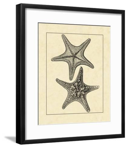 Antique&Deckle Vintage Starfish II--Framed Art Print