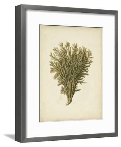 Sealife Collection II--Framed Art Print