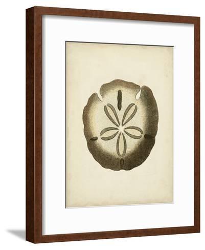 Sealife Collection IX--Framed Art Print