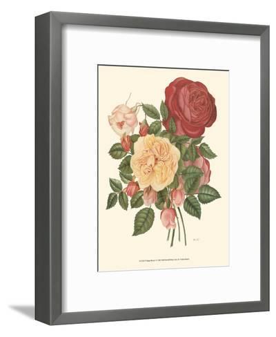 Vintage Roses I--Framed Art Print