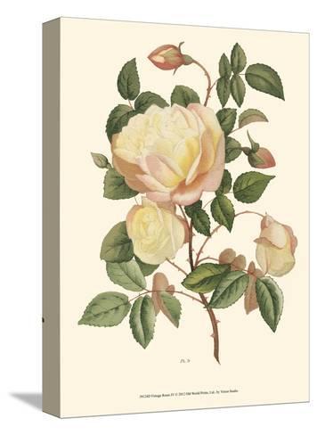 Vintage Roses IV--Stretched Canvas Print