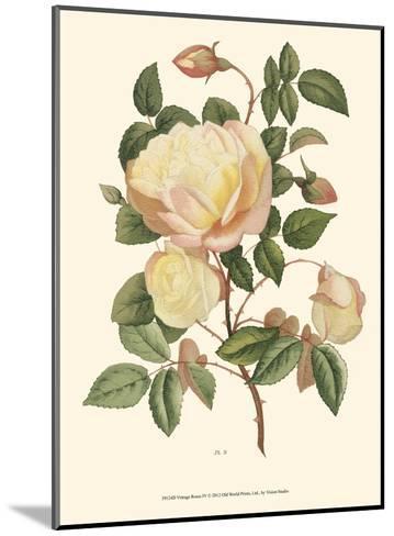 Vintage Roses IV--Mounted Art Print