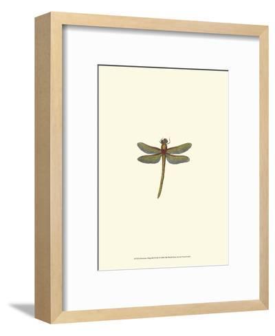 Miniature Dragonfly II--Framed Art Print