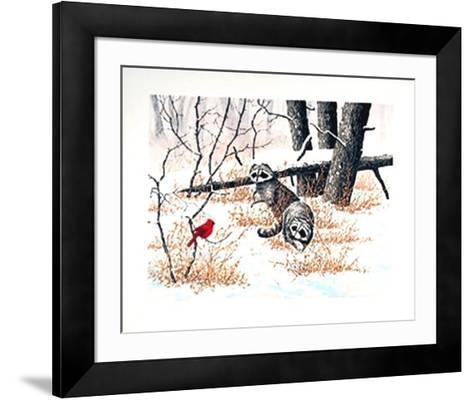 Cardinal-Chris Forrest-Framed Art Print