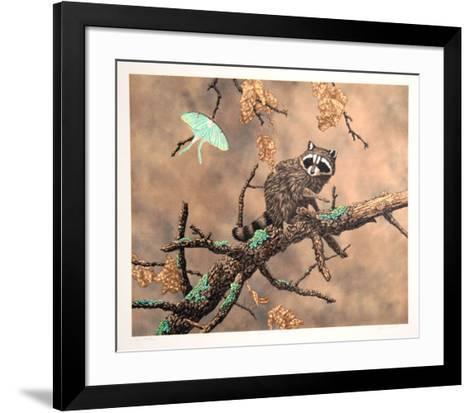 Luna (Racoon)-Chris Forrest-Framed Art Print