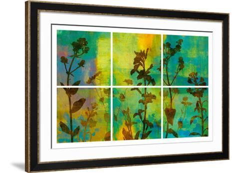 Wild Flowers II-Tania Bello-Framed Art Print