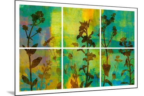 Wild Flowers II-Tania Bello-Mounted Art Print