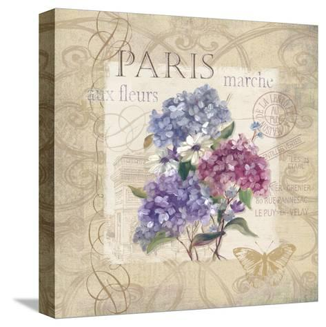 Paris Flower Market-Carol Robinson-Stretched Canvas Print