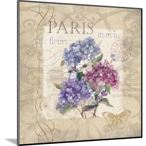 Paris Flower Market-Carol Robinson-Mounted Art Print