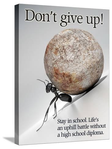 Don't Give Up--Stretched Canvas Print