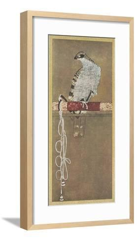 Falcon--Framed Art Print