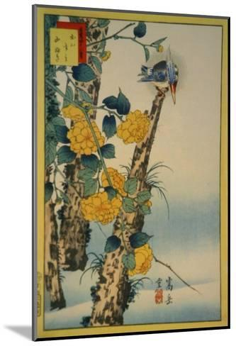 Kingfisher and Gold-Nettle-Sugakudo-Mounted Art Print