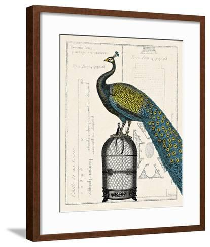 Peacock Birdcage II-Sue Schlabach-Framed Art Print
