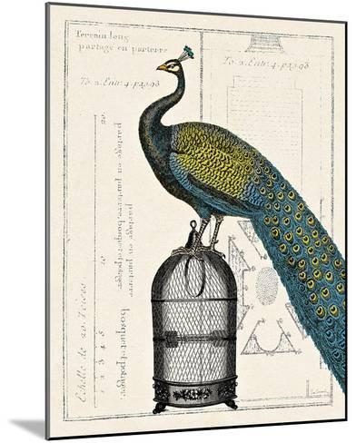 Peacock Birdcage II-Sue Schlabach-Mounted Art Print