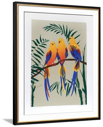 Three Tropical Birds-Anne Nipper-Framed Art Print