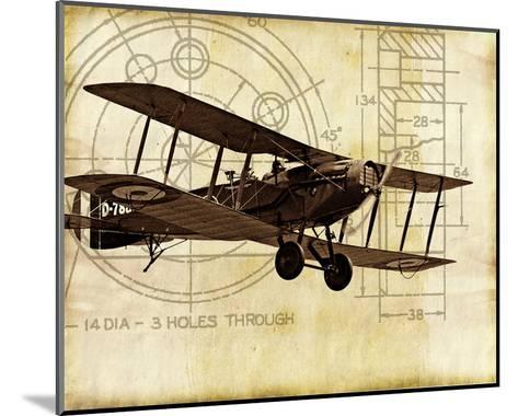 Flight Plans I-Michael Marcon-Mounted Art Print