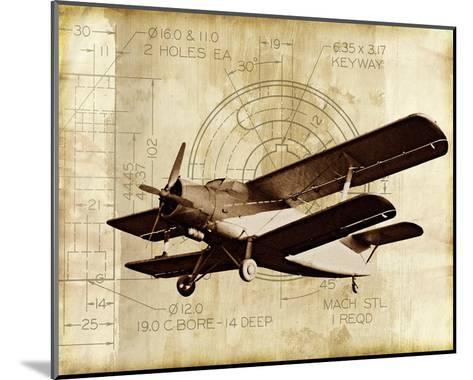 Flight Plans II-Michael Marcon-Mounted Art Print