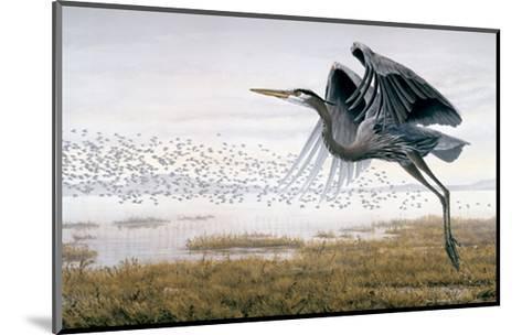 Heron & Sandpipers-Don Li-Leger-Mounted Art Print
