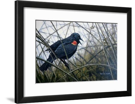 Red Winged Black Bird-Don Li-Leger-Framed Art Print