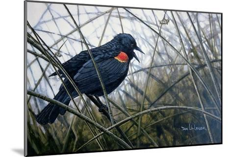 Red Winged Black Bird-Don Li-Leger-Mounted Art Print