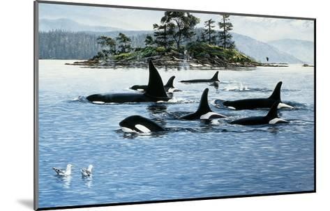 Passing Through-Orcas-Andrew Kiss-Mounted Art Print