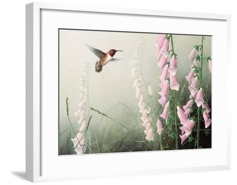 Rufous Hummbrd/Fxglve-Don Li-Leger-Framed Art Print