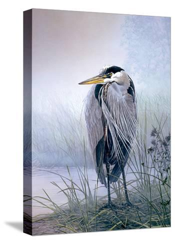Brooding Heron-Don Li-Leger-Stretched Canvas Print