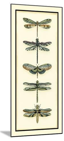 Dragonfly Collector II-Chariklia Zarris-Mounted Giclee Print