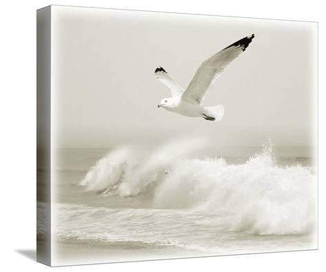 Time Out V-Carlos Casamayor-Stretched Canvas Print