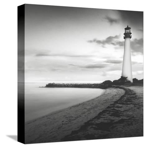 Searching-Moises Levy-Stretched Canvas Print