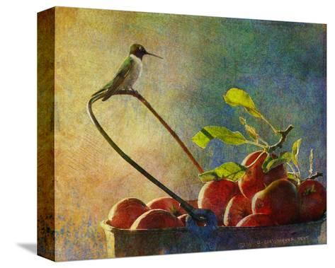 Apples and Hummer-Chris Vest-Stretched Canvas Print