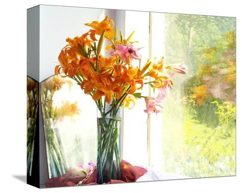 Orange Reflection-Judy Stalus-Stretched Canvas Print