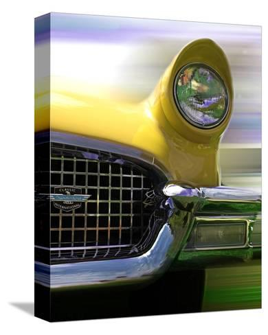 Thunderbird-Richard James-Stretched Canvas Print