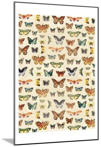 Butterflies-Jace Grey-Mounted Art Print