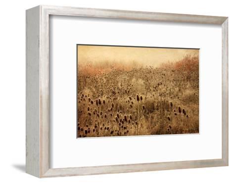 Teasel & Rosehips II-David Winston-Framed Art Print