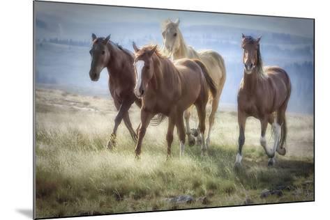 Morning Stroll-Wendy Caro-Mounted Art Print