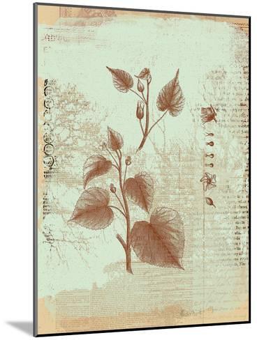Botanical I-Ken Hurd-Mounted Art Print