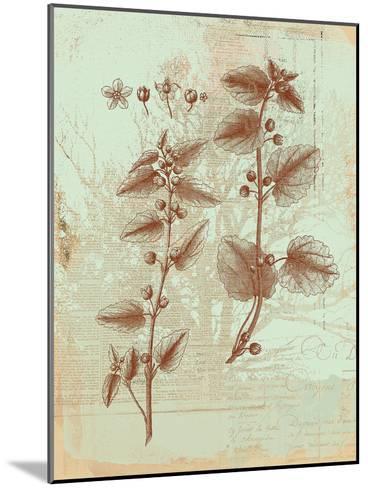 Botanical III-Ken Hurd-Mounted Art Print