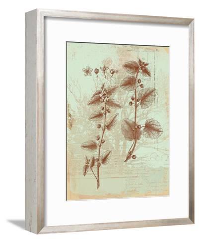 Botanical III-Ken Hurd-Framed Art Print