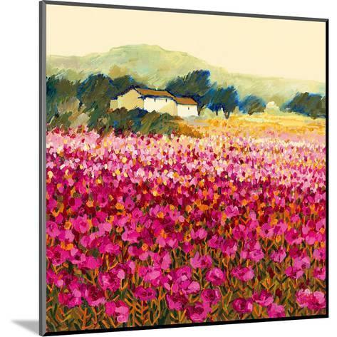 Le Jardin Rouge, Provence-Hazel Barker-Mounted Art Print