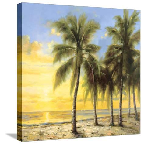 South Sea Isle-Hannah Paulsen-Stretched Canvas Print