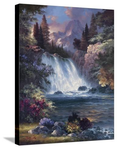 Sunrise Falls-James Lee-Stretched Canvas Print