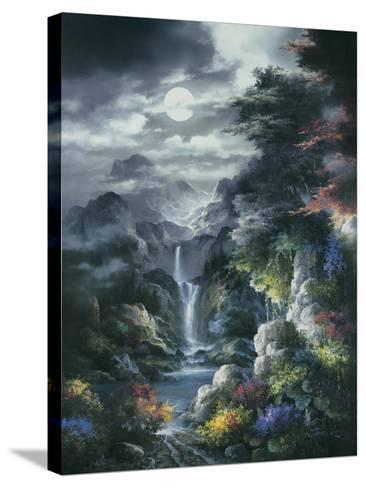 Midnight Mist Canyon-James Lee-Stretched Canvas Print