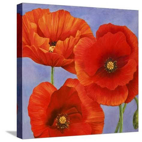 Dance of Poppies II-Luca Villa-Stretched Canvas Print