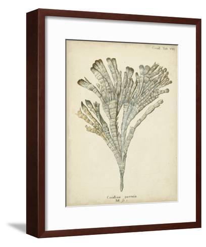 Coral Collection I-Johann Esper-Framed Art Print