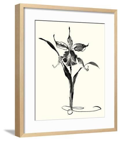 Studies in Ink - Cattleya-Nan Rae-Framed Art Print